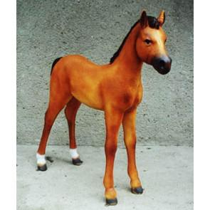 Pferd Fohlen hellbraun
