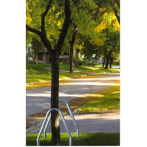 Baumschutzbügel aus Edelstahl 60 mm